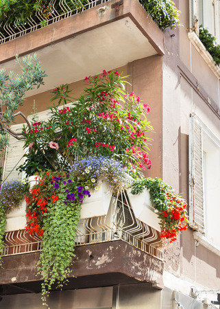 Flowers on forged balcony in Rimini  Italy  photo