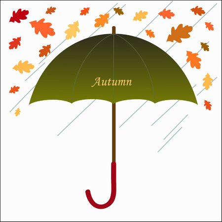 Beautiful hand-drawn illustrations with umbrella and leaves  Illustrations for use in design, made in vector Vector