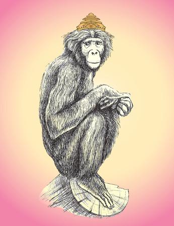 Dibujado a mano mono en la corona que se sienta en el árbol. Ilustración del vector. Foto de archivo - 32760539