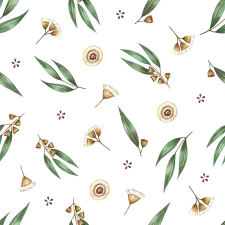 Watercolor seamless pattern branches of eucalyptus. Vector illustration. Illustration