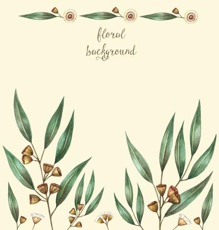 Aquarelle de feuilles d'eucalyptus et de branches. Vector illustration.