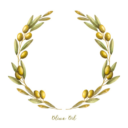 olive tree isolated: Watercolor olive branch wreath. Hand drawn natural vector frame. Illustration