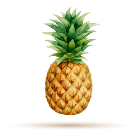 30 749 pineapple cliparts stock vector and royalty free pineapple rh 123rf com clipart pineapple with face clipart pineapple slice