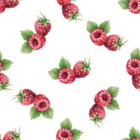 Watercolor pattern of fruit, raspberry illustration.