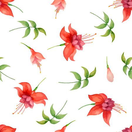 fuchsia: Patr�n de la acuarela, flores fucsias y hojas sobre fondo blanco, ilustraci�n vectorial.