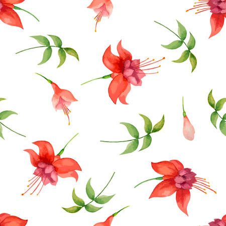 fuchsia: Watercolor pattern, fuchsia flowers and leaves on white background, vector illustration.
