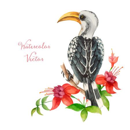 beak: African Toko yellow beak sitting on a branch, watercolor vector illustration. Illustration
