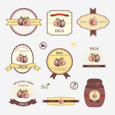 feuille de figuier: Figures, un ensemble de modèles de conception et étiquette, illustration vectorielle. Illustration