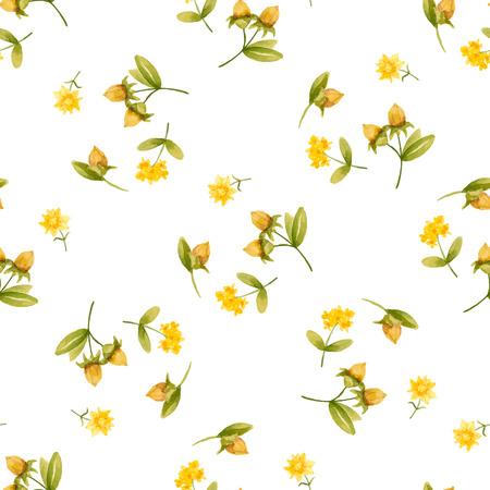 Jojoba oil, watercolor vector image, a medicinal plant.A healthy life.Seamless pattern.