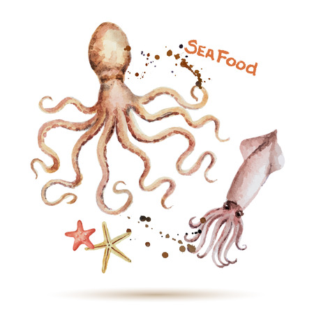 seafood background: Watercolor octopus and squid. Fresh organic seafood. Vector illustration.