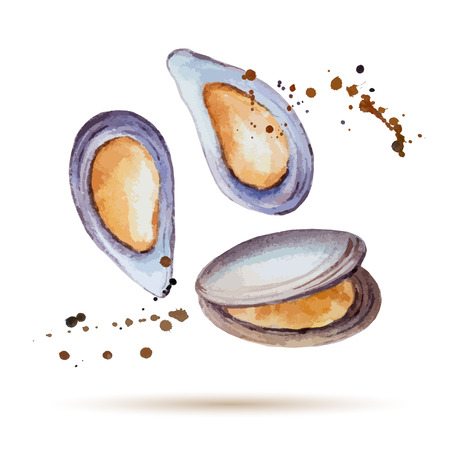 seafood background: Watercolor mussels. Fresh organic seafood. Vector illustration.