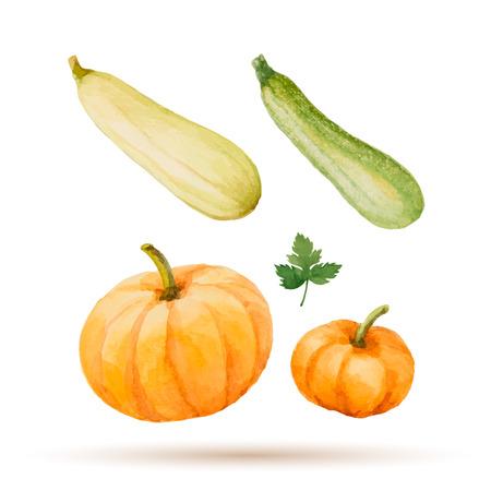 水彩の野菜、かぼちゃ、ズッキーニ、パセリのセットです。