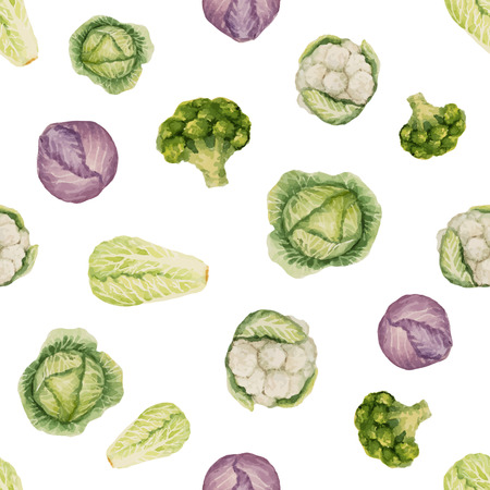 Watercolor seamless pattern of cabbage, vector illustration. Vector