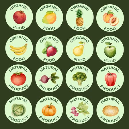 Aquarel set iconen groenten en fruit, vector illustratie.