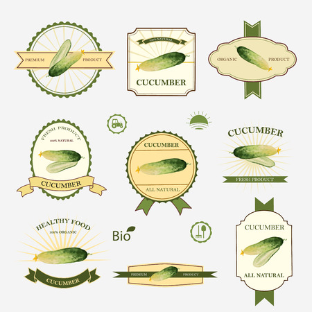 fresh vegetable: Cucumber, set of label design and templates, vector illustration.