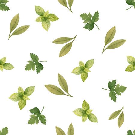 パセリ、ほうれん草、湾の葉、ベクトル イラスト水彩のシームレスなパターン。