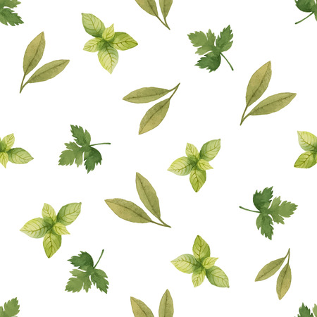 water on leaf: Watercolor seamless pattern of parsley, spinach, Bay leaf, vector illustration.