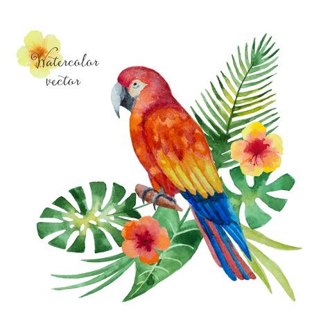 oiseau dessin: perroquet Aquarelle, fleurs exotiques et des feuilles isolées sur fond blanc, illustration vectorielle.