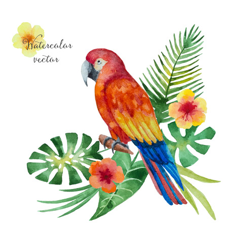 macaw: Watercolor parrot, exotic flowers and leaves isolated on white background, vector illustration. Illustration