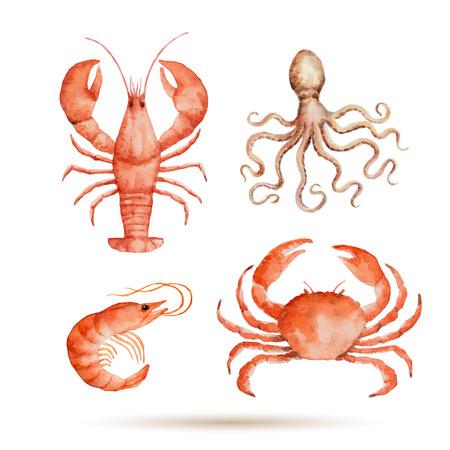 Aquarel set van zeevruchten op een witte achtergrond. Verse biologische zeevruchten. Vector illustratie. Stock Illustratie