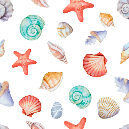 seashell: Watercolor seamless pattern with sea shells on white background, illustration. Illustration