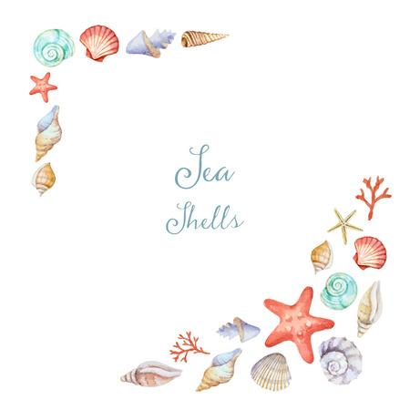 白い背景、イラストの貝殻とフレームの水彩画のコーナー。