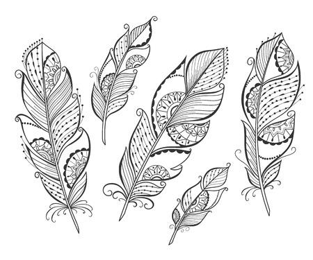 Main Zentangle dessiné plumes stylisées pour votre conception, illustration vectorielle. Banque d'images - 47986802