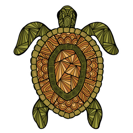 turtles: Stylized turtle style zentangle. Sea collection for your design.