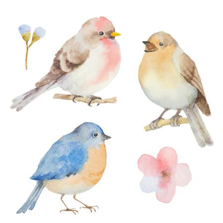 수채화 조류와 꽃의 집합입니다. 봄 인사말 카드를 디자인합니다.
