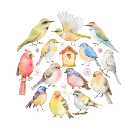 Watercolor set of birds and birdhouse in the shape of a circle.  Hand painted illustration on white background. Elements for design of congratulatory cards, invitations, business cards and more. Banco de Imagens