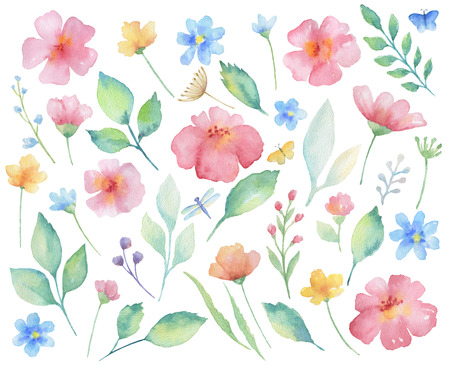 Watercolor set of flowers, leaves, branches and butterflies. Elements for design on white background.