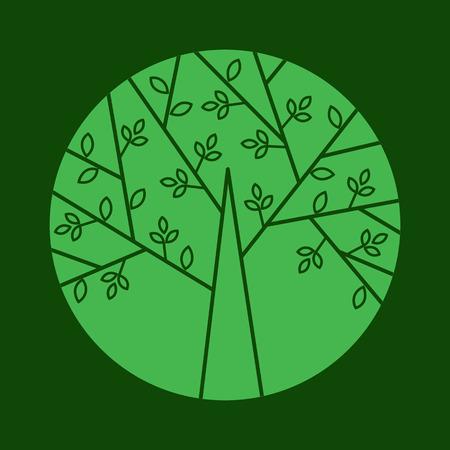 Arbre vecteur dans un style à la mode linéaire. Vector illustration pour votre conception botanique. Vector icône d'un arbre dans le cercle. Banque d'images - 55618210