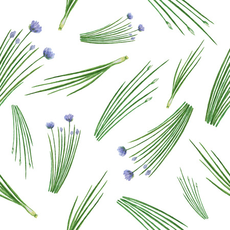 Watercolor vector seamless pattern hand drawn herb chives. Watercolor leaves and branches of chives on a white background. Herbs for packaging design, cards, postcards and book illustrations.
