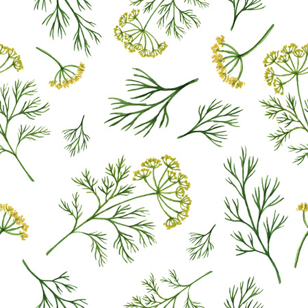 dill: Watercolor vector seamless pattern hand drawn herb dill . Watercolor leaves and branches of dill on a white background. Herbs for packaging design, cards, postcards and book illustrations. Illustration
