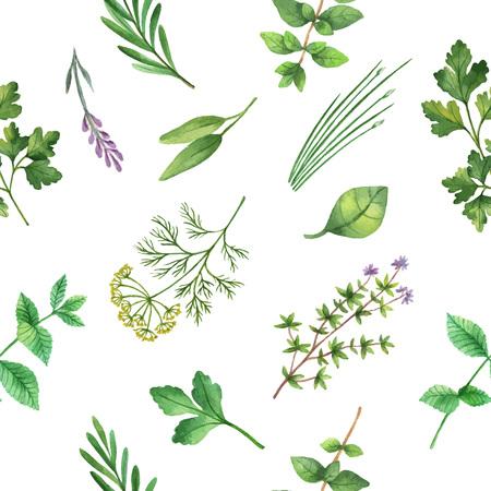 水彩ベクトル シームレス パターン描かれたハーブ。水彩の葉と白の背景にハーブの枝。デザイン、カード、ポストカード、書籍イラストの包装のた