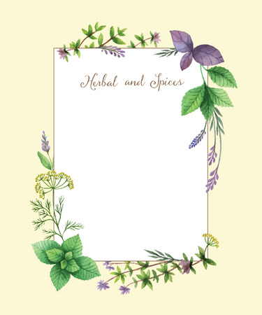 Watercolor vector hand painted frame with herbs and spices. The perfect design for greeting card, skrabbuking, menus, packaging, kitchen decor, cosmetics, natural and organic products. Rectangular frame with space for text. Illustration