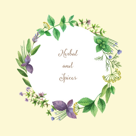 edible: Watercolor vector hand painted frame with herbs and spices. The perfect design for greeting card, skrabbuking, menus, packaging, kitchen decor, cosmetics, natural and organic products. Round frame with space for text.