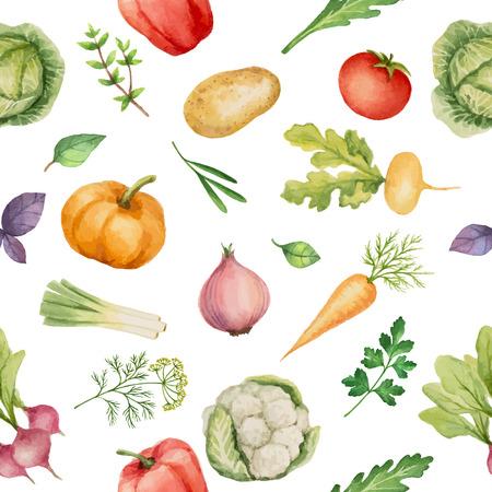 Naadloos patroon met waterverf groenten. Hand getrokken voedsel textuur met radijs, paprika's, aardappelen, kool, rapen, uien, wortelen, tomaat, komkommer, koriander, basilicum, rucola, parsley.Vector illustratie.