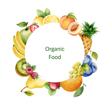 Watercolor painted organic fruit. Design element for a healthy lifestyle, diet menu and eco food. Place for your text.Vector illustration.