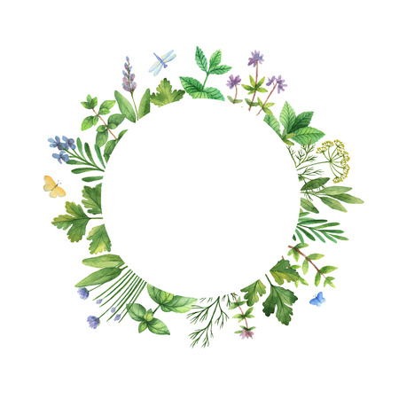 rosemary flower: Watercolor hand painted frame with herbs and spices. The perfect design for greeting card, packaging, kitchen decor, cosmetics, natural and organic products. Round frame with space for text.