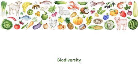 健康的な食事の生物多様性の水彩のバナーです。果物、野菜、動物、魚、鳥のコレクションです。あなたのテキストのためのスペース。