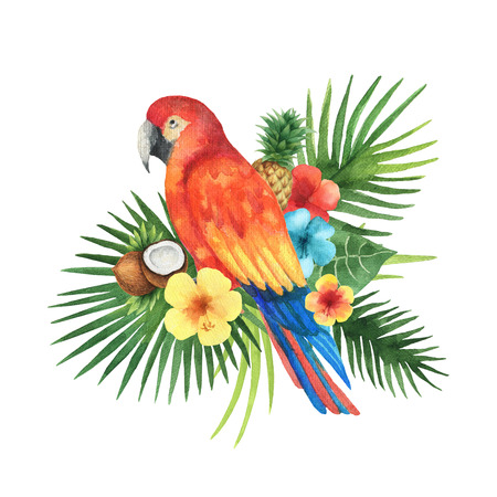 Watercolor bouquet of exotic leaves, parrots, hibiscus flowers, coconut and pineapple. Colorful tropical plants on a white background. Stockfoto