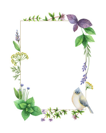 fresh food: Watercolor hand painted frame with herbs and spices. The perfect design for greeting card, skrabbuking, menus, packaging, kitchen decor, cosmetics, natural and organic products. Rectangular frame with space for text.