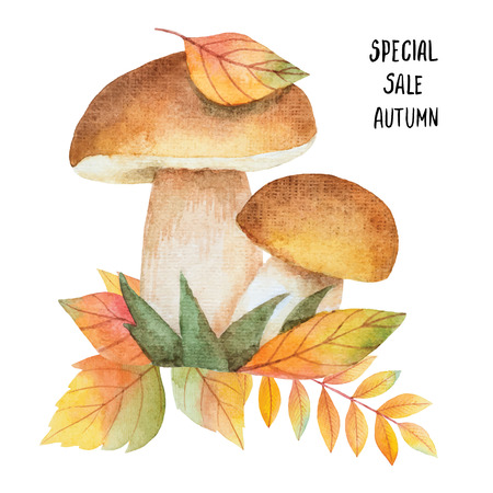 the fungus: Watercolor vector mushrooms with autumn leaves on a white background. Perfect for design greeting cards, calendars, invitations, banners, leaflets, posters, flyers. Big autumn sale.