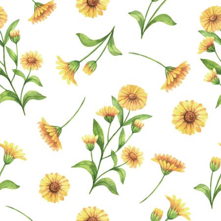 キンセンカ、マリーゴールドの花と枝水彩ベクトル シームレス パターン。繊維、紙、その他の印刷および web プロジェクトの背景。