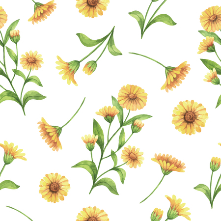 Watercolor vector seamless pattern with calendula, marigold flowers and branches. Background for textile, paper and other print and web projects.