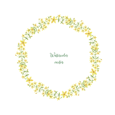 wort: Watercolor vector round frame of St Johns wort. Healing Herbs for design Natural Cosmetics, aromatherapy, medicine, health products and homeopathy. Illustration
