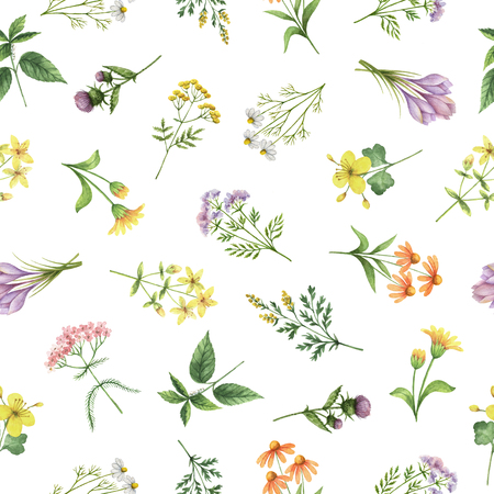 Watercolor seamless pattern with flowers and branches. Background for textile, paper and other print and web projects.