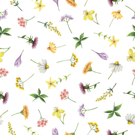 wort: Watercolor seamless pattern with medical herbs and plants. Background for textile, paper and other print and web projects. Stock Photo