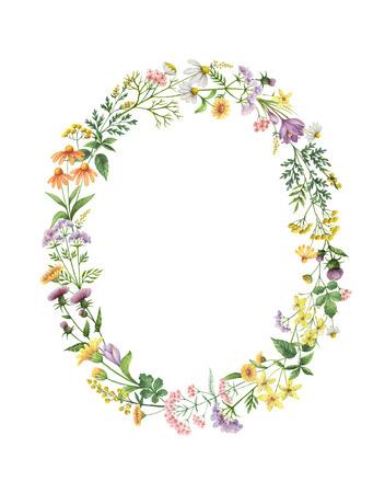 草原の植物と水彩のオーバル リース。日付またはデザインのグリーティング カード、結婚式招待状、ポスター、癒しのハーブを保存します。テキス 写真素材